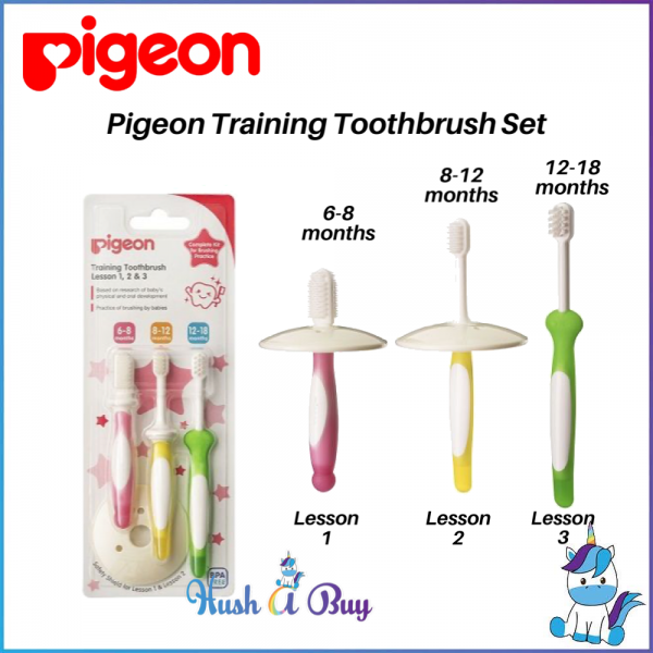 Pigeon Training Toothbrush Set Lesson 123 (6-18 month)