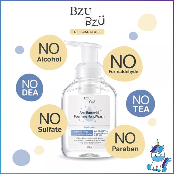 BZU BZU Anti Bacterial Foaming Hand Wash (300ml) - Product of Singapore Made in Malaysia